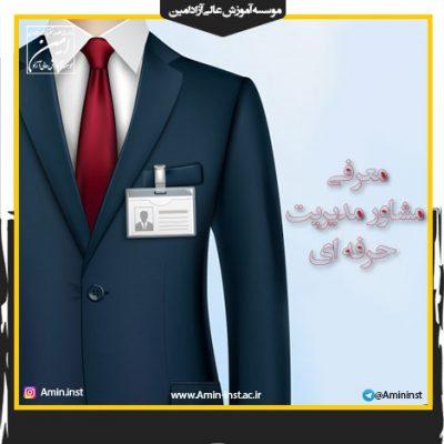 مشاور مدیریت حرفه ای